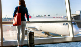 The Case of the Fly Stewardess